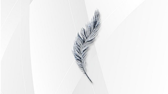 Midnight Memories - Feather